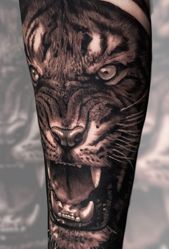 Tattoo Dresden Tigertattoo Constantin Schuldt